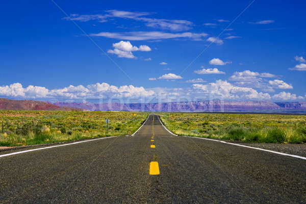 Deserto rodovia em linha reta vazio Arizona céu Foto stock © alexeys