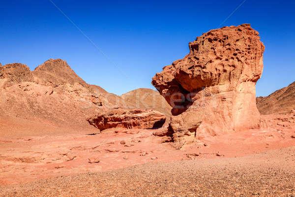 Mantar kaya kaya oluşumu park İsrail manzara Stok fotoğraf © alexeys