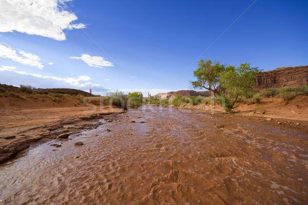 Mud river Stock photo © alexeys