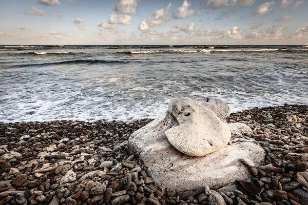 пляж сцена британский Виргинские о-ва вечер пусто Сток-фото © alexeys