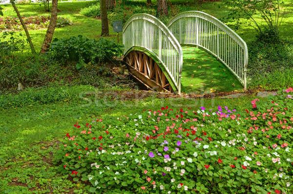 Stock photo: Garden