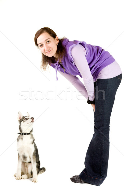 犬の訓練 犬 トレーナー ハスキー 子犬 孤立した ストックフォト © alexeys