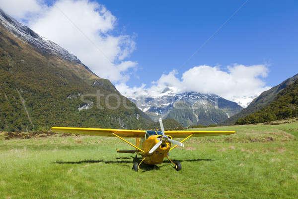 Plane in the Valley Stock photo © alexeys