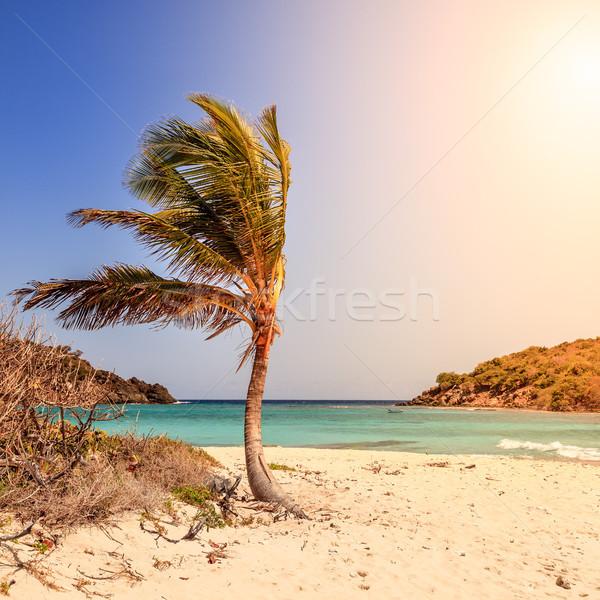 Trópusi tengerpart sziget üres idilli tengerpart kicsi Stock fotó © alexeys