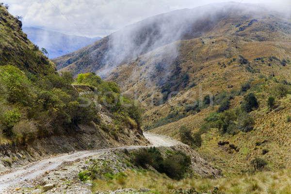 Road through Andes Stock photo © alexeys