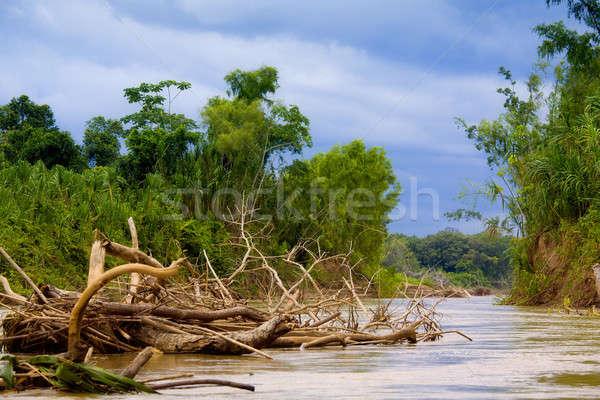 Manu River Stock photo © alexeys