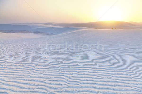 White Sands Sunset Stock photo © alexeys