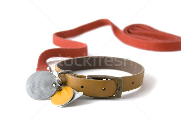 Collar with tags Stock photo © alexeys
