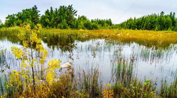 Michigan escénico vista cielo agua Foto stock © alexeys