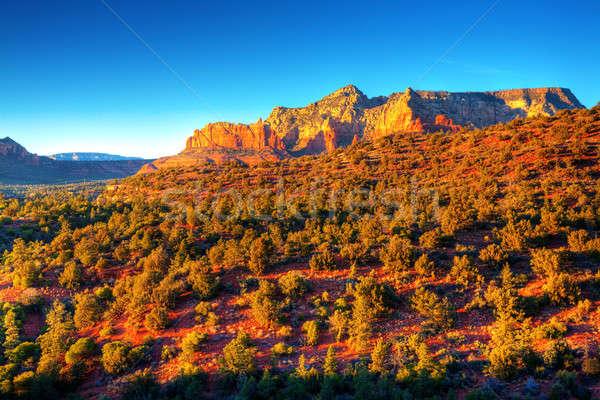 Zdjęcia stock: Arizona · czerwony · skał · piękna · widoku · wygaśnięcia