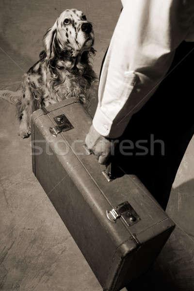 Leaving Stock photo © alexeys