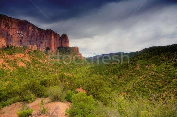 Zion National Park Stock photo © alexeys