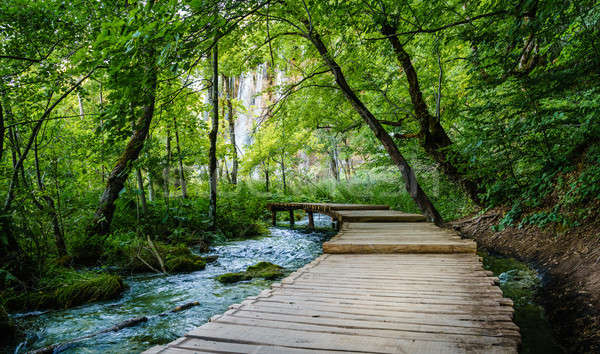 Plitvice Lakes National Park Stock photo © alexeys