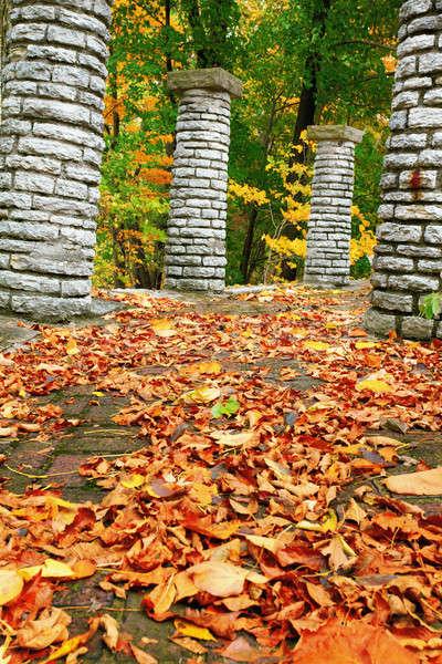Autumn Path Stock photo © alexeys