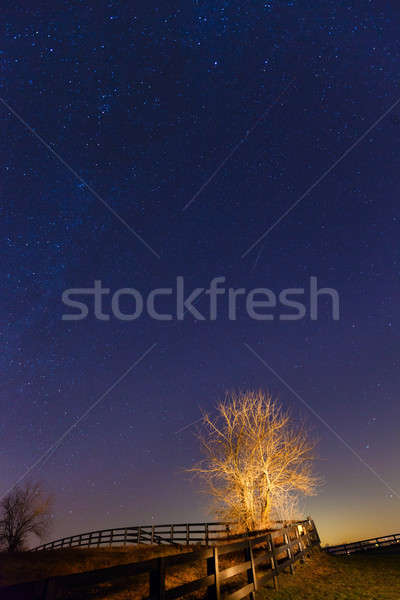 Meteor shower Stock photo © alexeys