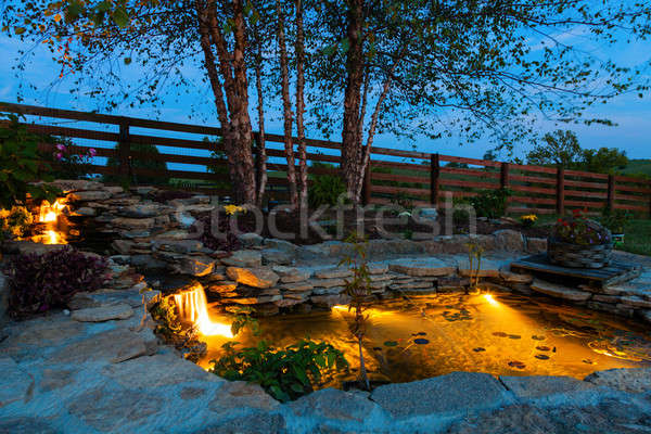 Tuin vijver decoratief koi nacht water Stockfoto © alexeys