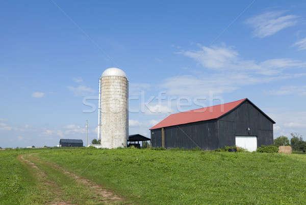 Silo and a barn  Stock photo © alexeys