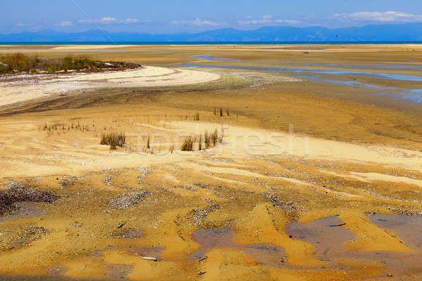 Faible marée scénique vue Nouvelle-Zélande plage Photo stock © alexeys