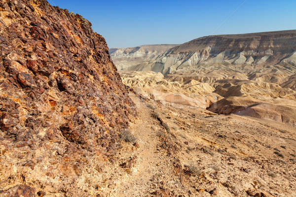 Sivatag festői kilátás kanyon Izrael égbolt Stock fotó © alexeys