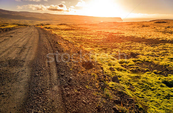 Road though Wesfjords Stock photo © alexeys