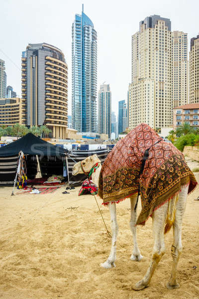 Tengerpart teve lakás Dubai homok sziluett Stock fotó © alexeys