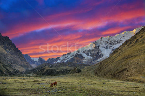 Evening in the Andes Stock photo © alexeys