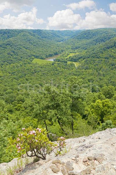 Kentucky hoog punt platteland centraal Stockfoto © alexeys