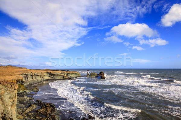 Southern coast of Iceland Stock photo © alexeys