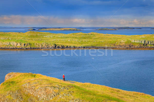 Western Iceland coast Stock photo © alexeys
