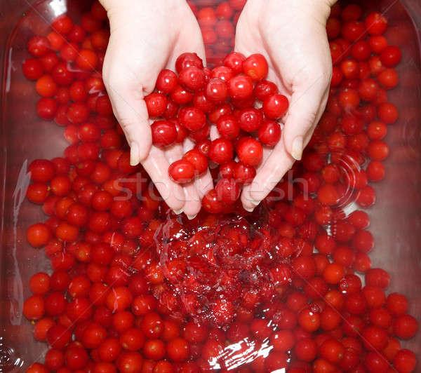 стиральные вишни раковина воды фрукты Сток-фото © alexeys