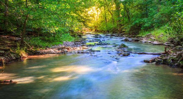 森林 小川 風光明媚な 表示 楽しい 丘 ストックフォト © alexeys