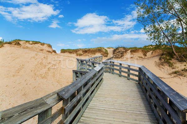 Schlafen tragen Seeufer Michigan Strand Himmel Stock foto © alexeys
