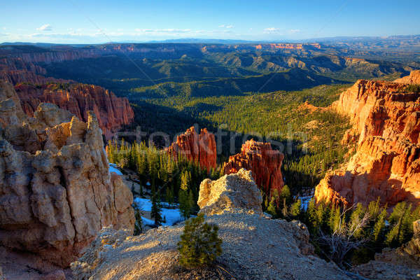 Bryce Canyon National Park Stock photo © alexeys