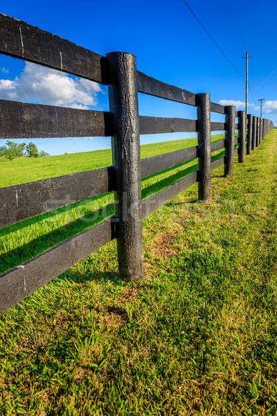 Fence Stock photo © alexeys
