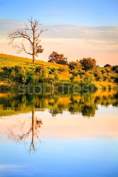 Evening on the lake Stock photo © alexeys