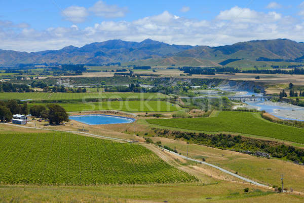 New Zealand Wine Country  Stock photo © alexeys