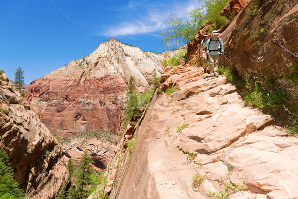 Stock photo: Hikers in Zion