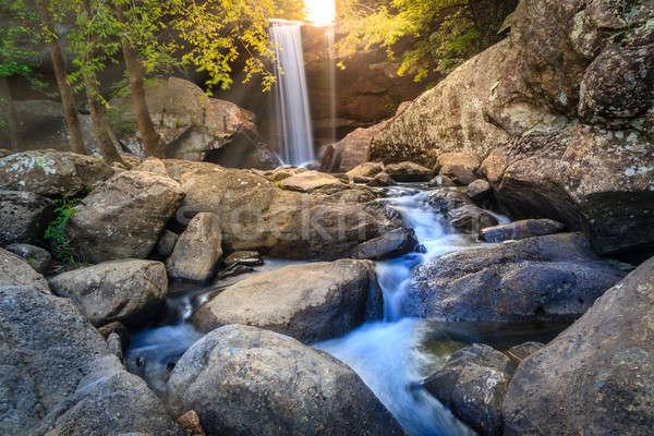 Stockfoto: Adelaar · lange · blootstelling · afbeelding · resort · park · Kentucky