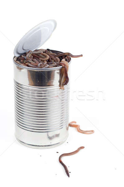 Can of worms Stock photo © alexeys