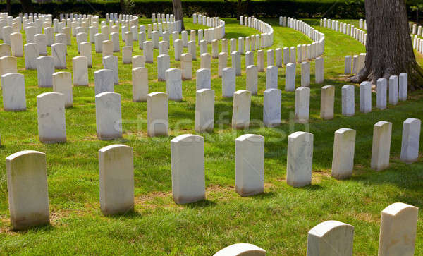 Military cemetery Stock photo © alexeys