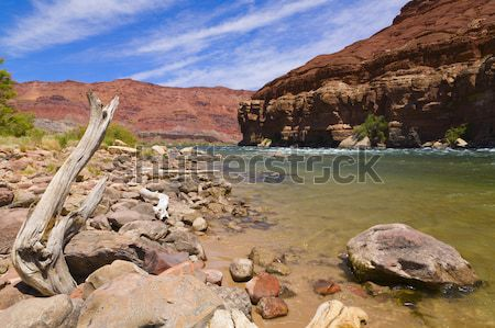 Colorado River Bank Stock photo © alexeys