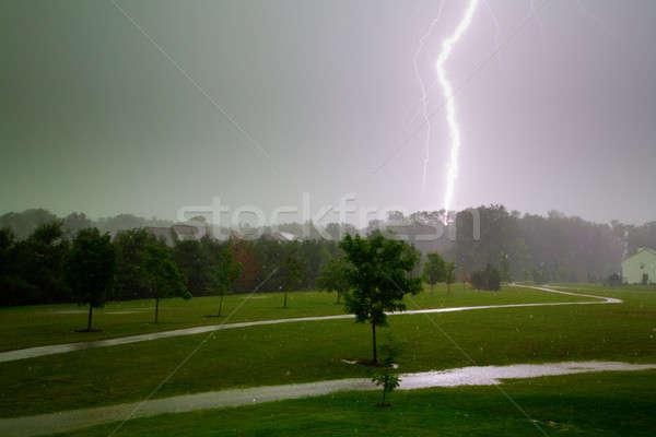 Stock fotó: Villám · égbolt · fény · eső · mező · zöld