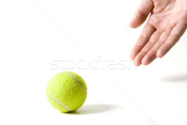 Stock fotó: Játék · kéz · teniszlabda · izolált · fehér · kutya