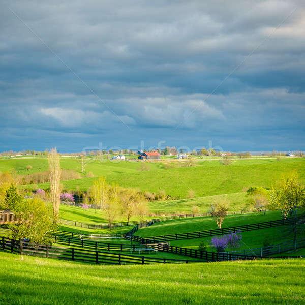 Landelijk Kentucky mooie scène hemel Stockfoto © alexeys
