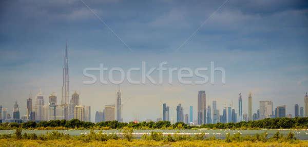 Przyrody widoku Dubai centrum panoramę wody Zdjęcia stock © alexeys