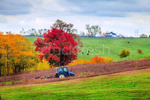 Farm work Stock photo © alexeys