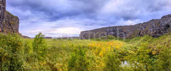 Canyon settentrionale Islanda acqua panorama verde Foto d'archivio © alexeys