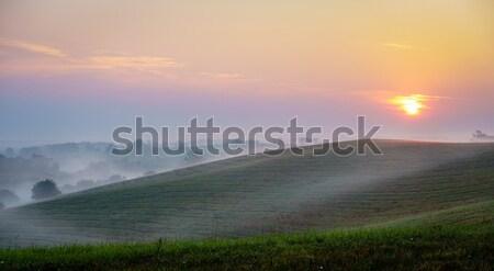 Zonsopgang centraal Kentucky mooie heuvels zomer Stockfoto © alexeys