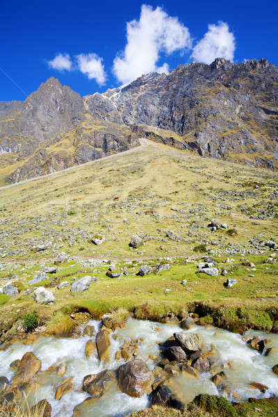 Andes Stock photo © alexeys