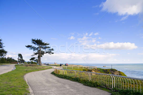 Walkway along the ocean side Stock photo © alexeys